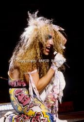 twisted-sister-band-photo-_10